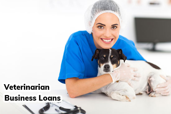 veterinarian business loans